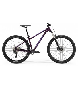 Bicicleta Merida BIG TRAIL 400