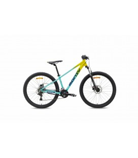 Bicicleta Monty KX9