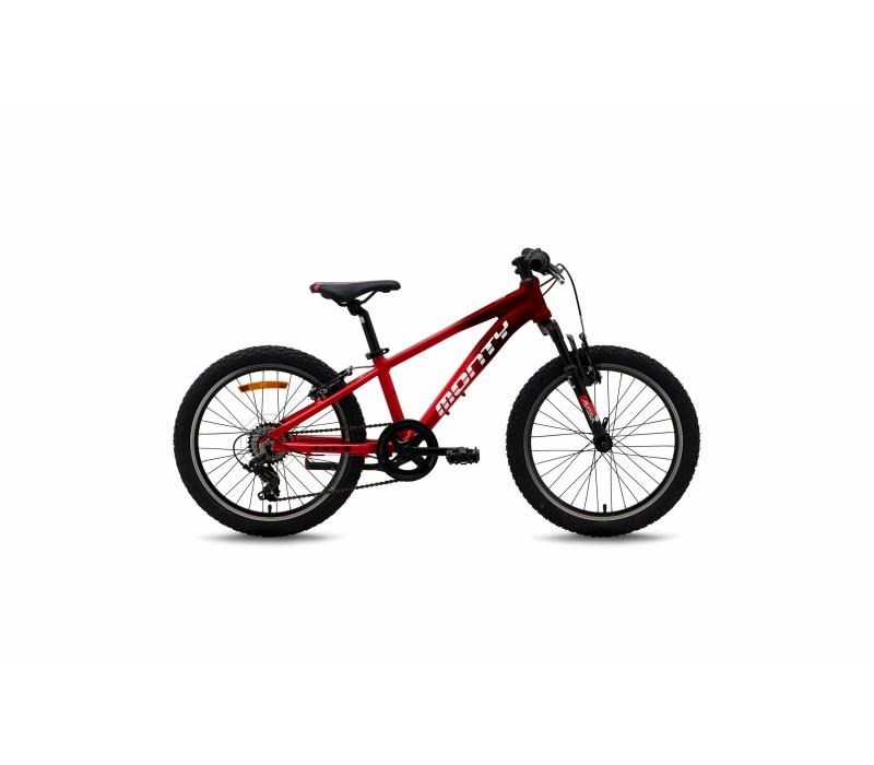 Bicicleta Monty KX5