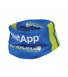 Braga Endura NetApp Team Replica