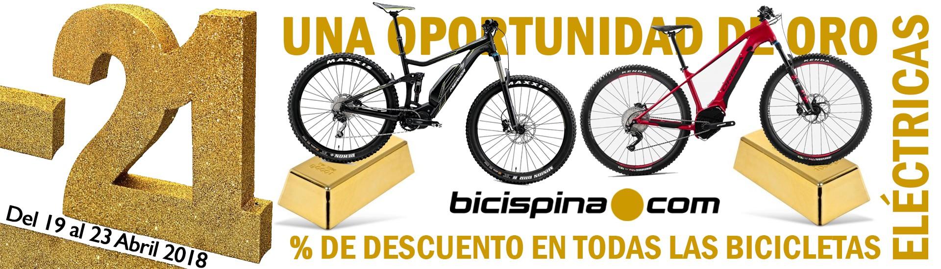 Día de la bicicletaDía 2